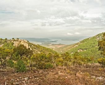 valle-del-arroyo-del-charco-hondo-galeria